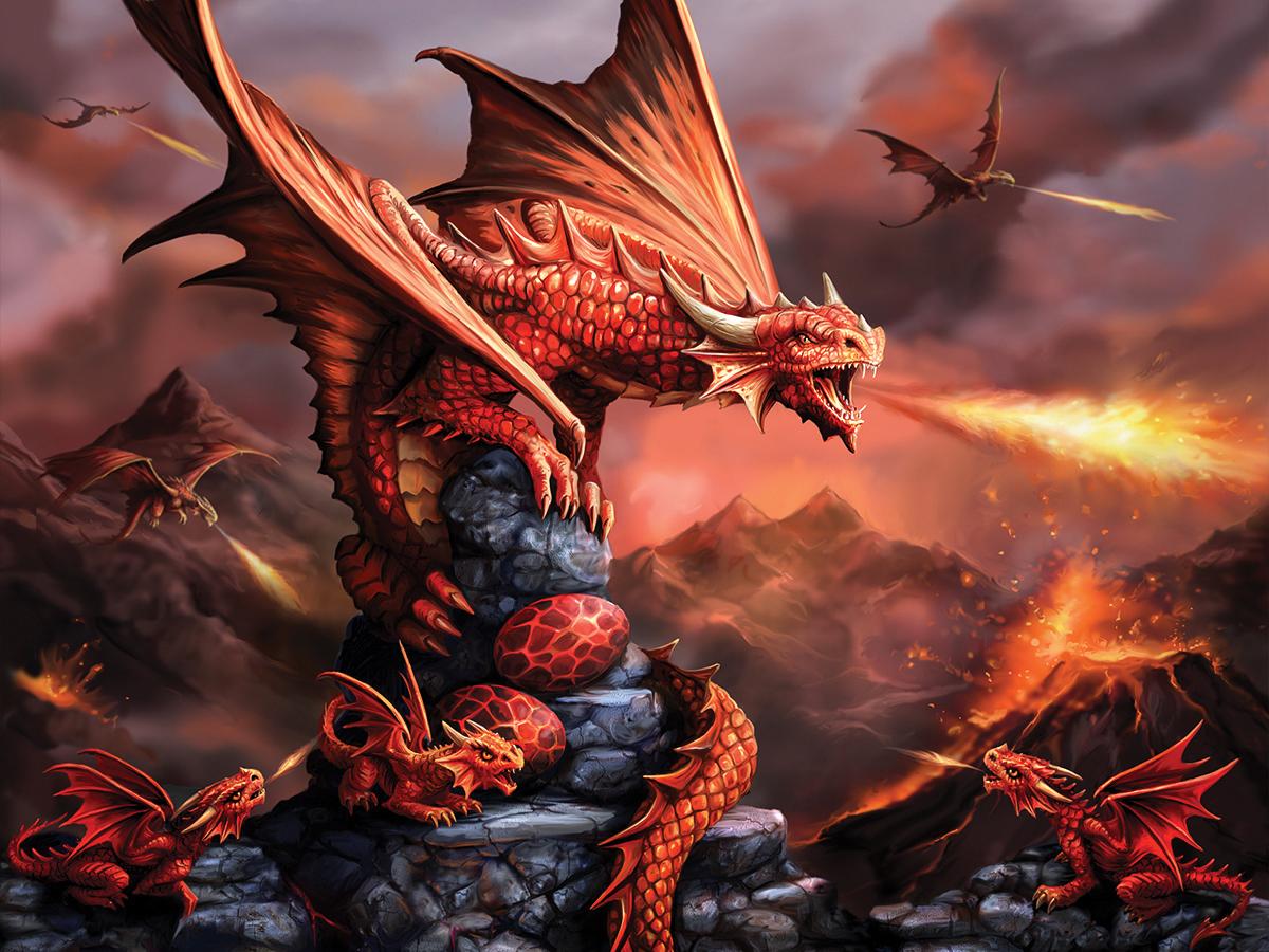 Огненный дракон картинки